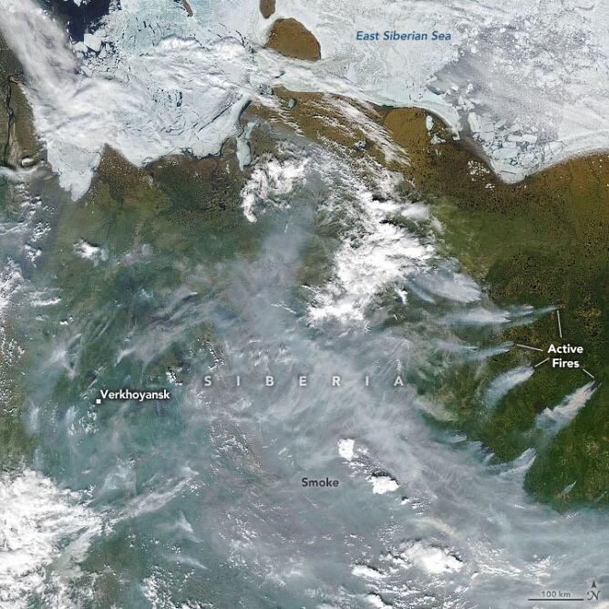 Pożary na Syberii płonące 23 czerwca 2020 (earthobservatory.nasa.gov)